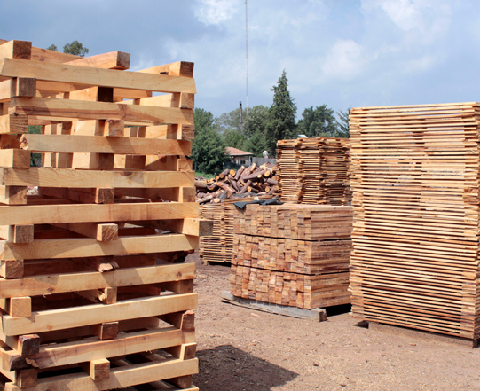 Compra de tarimas de madera en monterrey renso - Tarimas de madera usadas ...
